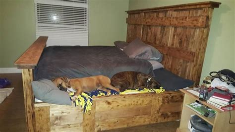 pet friendly bedroom furniture king bed frame