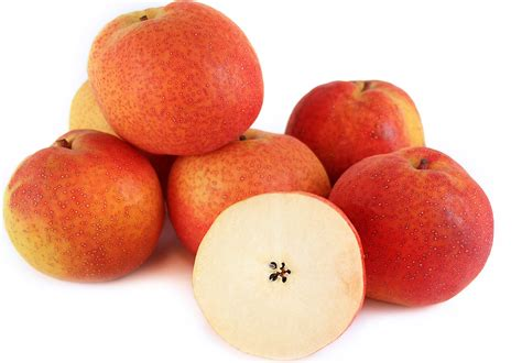 papple fruit papple pears information recipes and facts