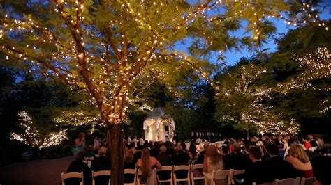 outdoor wedding tree lights