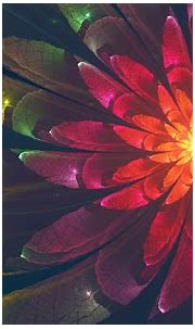Fractal Flower 4K Wallpapers | HD Wallpapers | ID #22759