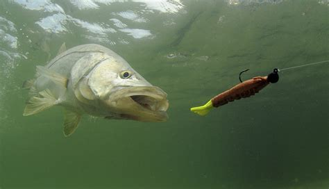 15 Amazing New Fishing Products From 2014