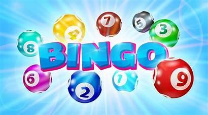 Bingo Numbers Reach Report