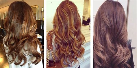 Brown Hair Color Shades by The Best Hair Color Shades Matrix