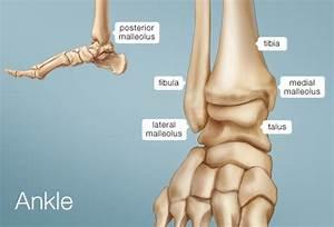 Ankle Impingement