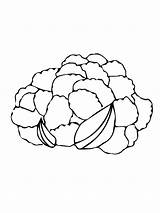 Cauliflower Coloring Pages Vegetables Drawing Head Supercoloring Recommended Getdrawings Mycoloring sketch template