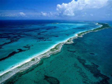 Top 10 Largest Coral Reefs Of The World Largest Coral Reefs