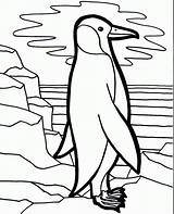 Penguin Coloring Pages Penguins Printable Cute Fun Lonely Preschool Sheets Cliparts Baby Print Cartoon Printables Bird Emperor Books Christmas Rocks sketch template