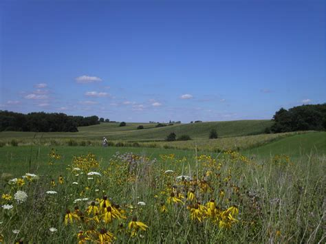 Marginal land in demand: researchers explore farmer ...