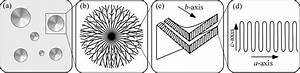 Hierarchical Structures In Polymer   A  Crystallizing