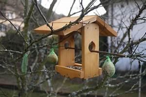 DIY Mangeoire Pour Les Oiseaux La Famille Kangourou En