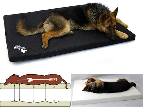 fortisline24 article pour animaux couchage tapis