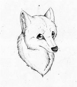 Wolf Face by PandorasWolf on DeviantArt