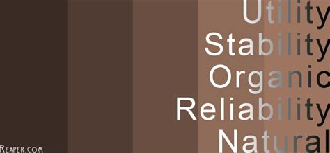 meaning of the color brown colour meaning brown reliable colours brown and