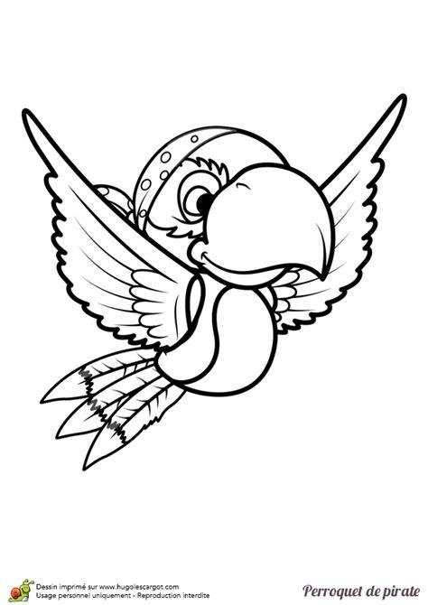 cuisine homme coloriage d un perroquet de pirate en vol hugolescargot com