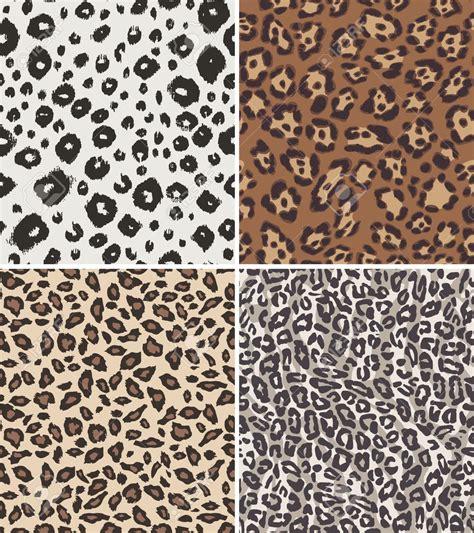 leopard print clipart clipground