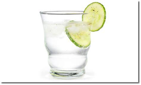 gin tonic mit gurke gin tonic mit gurke rezept