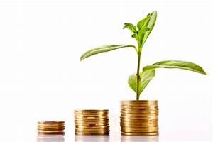Financial Sustainability - MIA online
