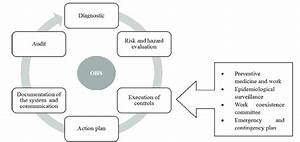 Process Of Implementation Of The Occupational Health And