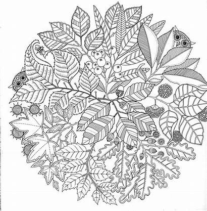 Coloring Pages Adults Adult Printable Abstract