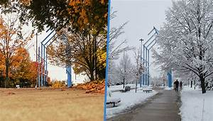 Venn Diagram  Gvsu Campus In The Fall Vs Winter