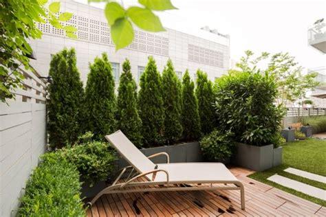 Pflanzen Für Dachterrasse by Terrassensichtschutz Ideen Bilder Und 20 Inspirierende