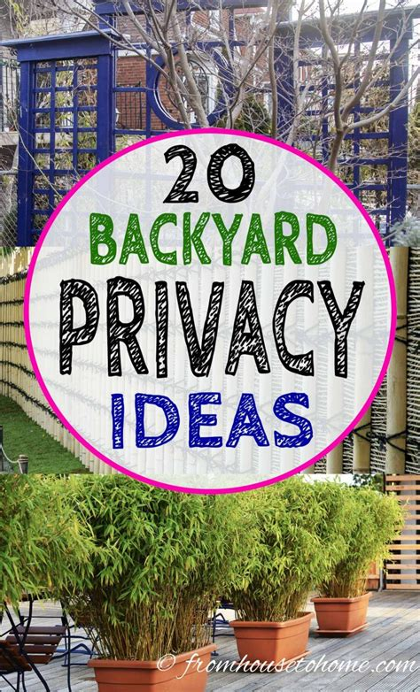 Neighbors In Backyard by 20 Backyard Privacy Ideas For Screening Neighbours Out