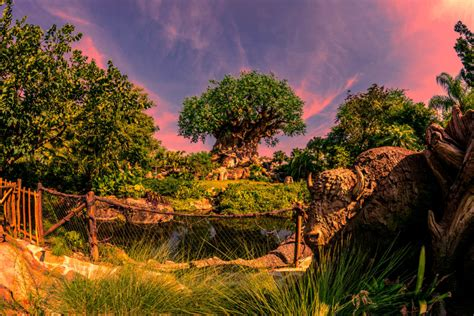 orlando theme parks  age group