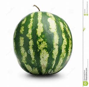 Watermelon Stock Images - Image: 15501644
