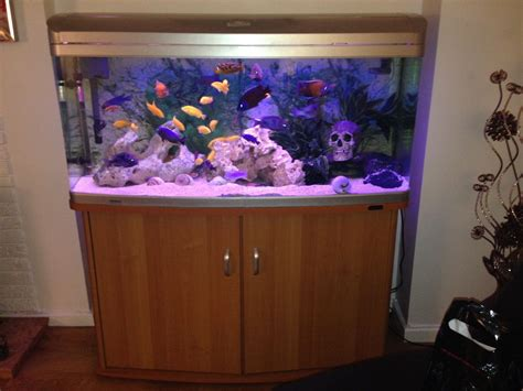 aquarium aquatlantis 300 litres 300 litre aqua one 1230xl aquarium and fish sheffield south pets4homes