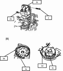 0857 Fiat Timing Belt