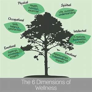 Six Dimensions Of Wellness Iowa State Daily Self