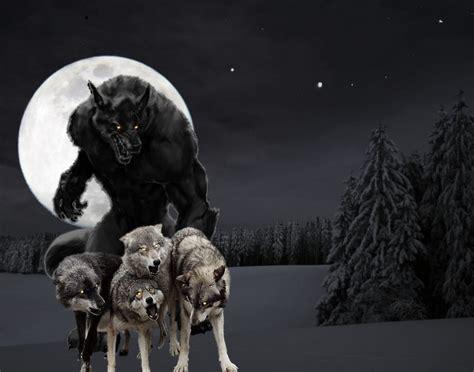 Werewolf And Human Mate