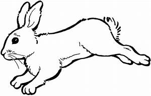 Rabbit bunny clipart black and white free clipart images 2 ...