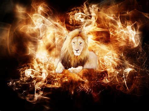 imagenes  efectos de fuego  el todo en nuestra vida