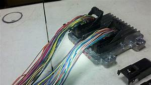 Wiring Harness Information For 2007 Up Vortec Gen Iv Truck Harnesses