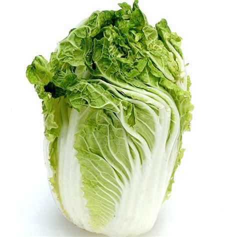 cuisiner le chou chinois tous les légumes de saison à cuisiner au mois de février le chou chinois un légume à