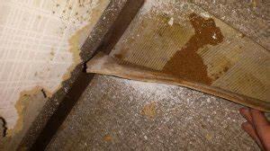 Vinyl Asbest Platten : asbest im bodenbelag cushion vinyl ~ Buech-reservation.com Haus und Dekorationen