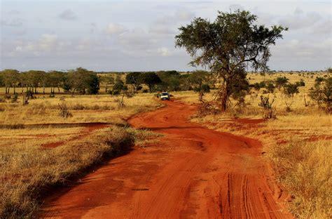Die 5 schönsten Nationalparks in Kenia  Safaris im