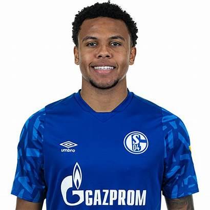 Mckennie Weston Schalke Player Fc Usa Footballtodaylive