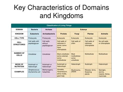 chapter  classification powerpoint