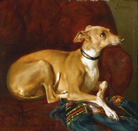 sur chaise an greyhound a 19th century attorney
