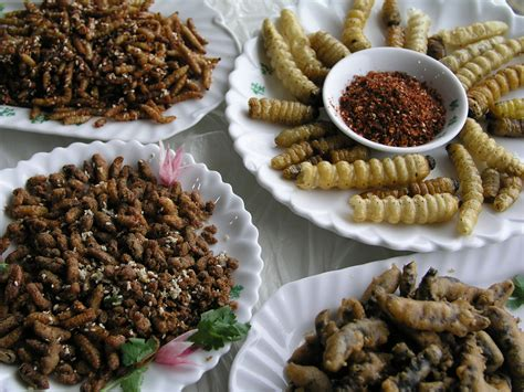 insecte cuisine why not eat insects fuchsia dunlop