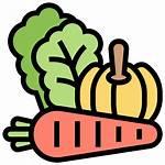 Vegetable Icon Vegetables Fresh Fibers Recura Catering