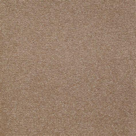 platinum plus carpet sle enraptured i color almond