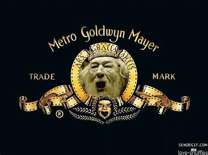 Mayer Metro Goldwyn Mgm Memes Lion Movies