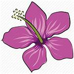 Rhododendron Flower Hibiscus Icon Svg Rose Mallow