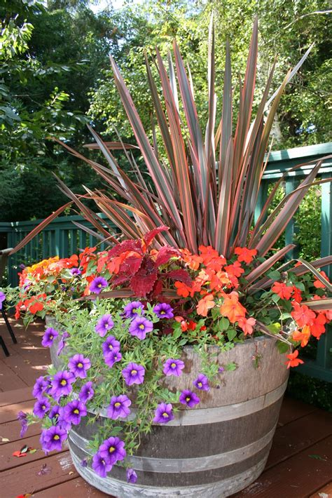 Container Garden Tips Kinds Of Ornamental Plants