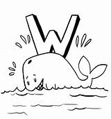 Whale Coloring Printable Cartoon Drawing Whales Sheets Realistic Colors Children Getdrawings Line Bestcoloringpagesforkids sketch template