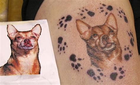 tattoo symbolism dog tattoo symbolism