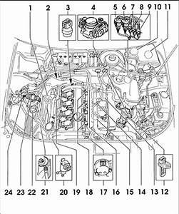 Engine Hose Diagram